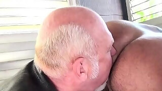 mature chub ass fucking tatted teddy from behind